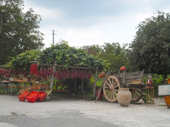 peppers & onions at a road-side stand in Calabria