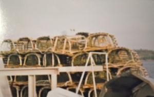 lobster traps: Nova Scotia