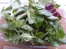 mixed salad greens