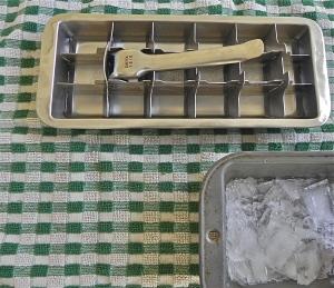 ice cube tray and ice